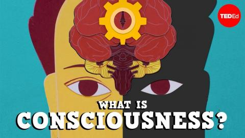 What is Consciousness poster
